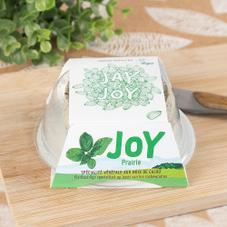 Joy Jay and Joy