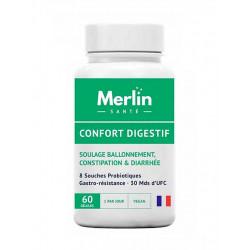 confort digestif merlin santé