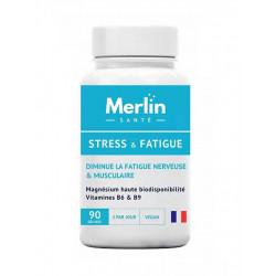 stress et fatigue merlin santé
