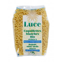 coquillettes blanches bio Luce