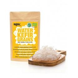 grains de kefir d eau Kefirko déshydratés