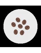 Cafés & Cacao